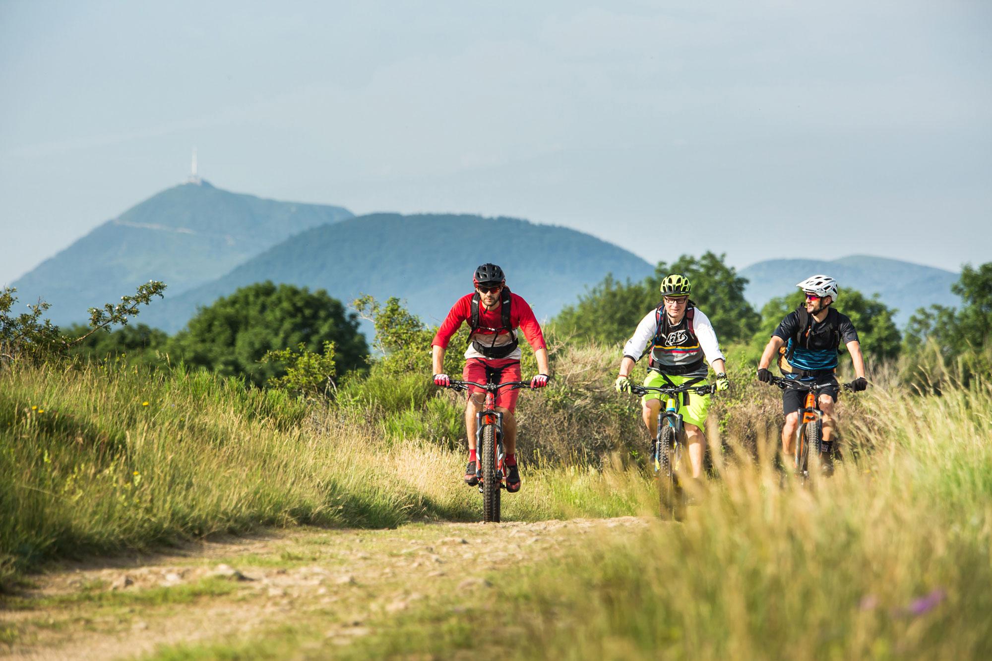 Fahrradexkursionen auf den Spuren der Natur
