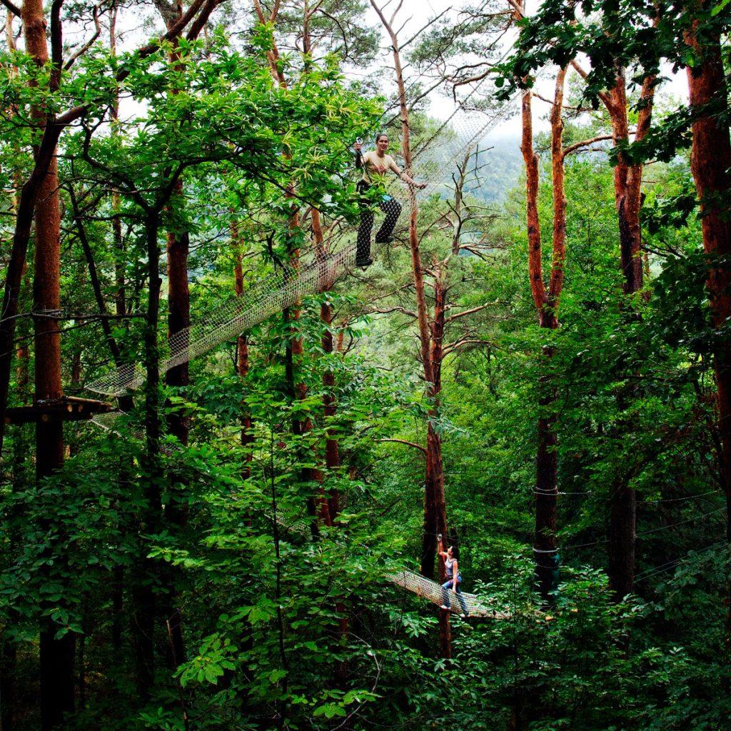 Treetop adventure course at Parc Écureuil in Châtel-Guyon