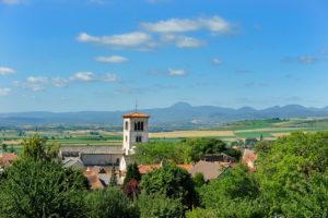 Collégiale Saint-Martin, Artonne (63)