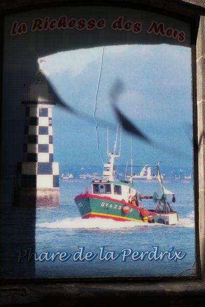 La richesse des mers